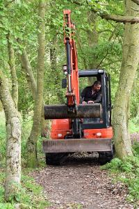 Digger driving between the trees to the brook