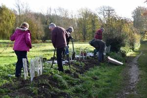 Hedge planting Nontron Meadows