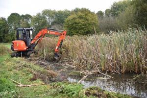 Removing vegetation from pond