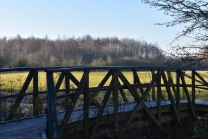 Watkins Bridge with view to Cox's Wood