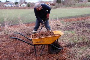 Spreading wood chips