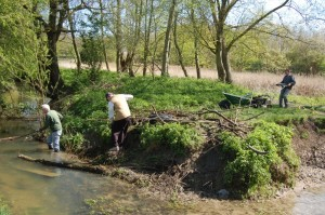Clearing the brook