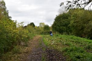 Cutting the Cox's Wood ride